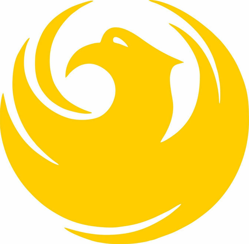 "Phoenix ""City Bird"" Exterior Window Decal - Outside Vinyl Decal - Free Shipping - Powercall Sirens LLC"