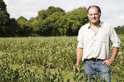 Andrew Tickle, Owner of Aronia Berries UK in his Aronia plantation, Kent