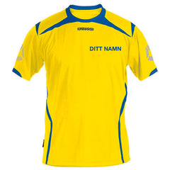 Stanno - SVERIGE SUPPORTTRÖJA MED NAMNTRYCK - TORNIO - [product_collection], Pulssport.se
