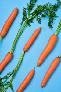 Smooth Singles (4-6 months): Carrot