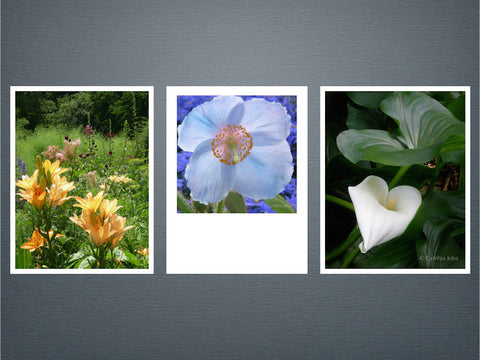 Essence of Flowers Set 2 - 6 cards