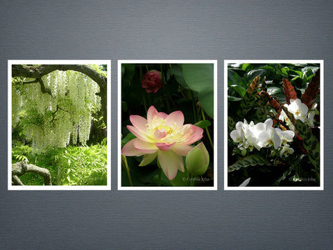 Essence of Flowers Set 1 - 6 cards