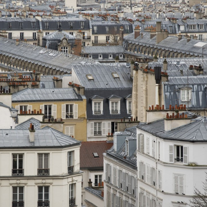 Paris Rooftop Photo, Nichole Robertson, Obvious State