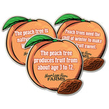 Peach Fact Signs (set of 5 facts)