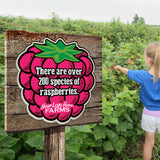 Berry Fact Signs (set of 5 strawberries)