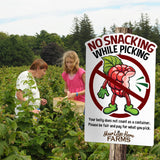 Berry Picking Rules (3 pack)