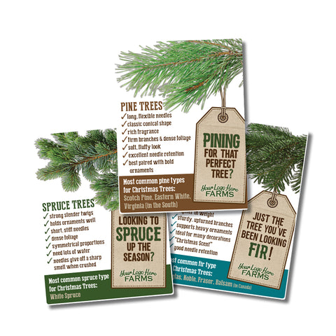 Christmas Tree Varieties