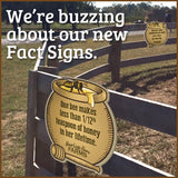 Bees & Honey Fact Signs (set of 5 facts)
