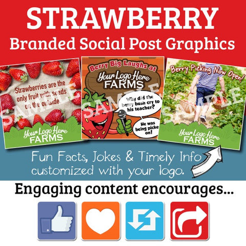 Berry Content for your Social Media