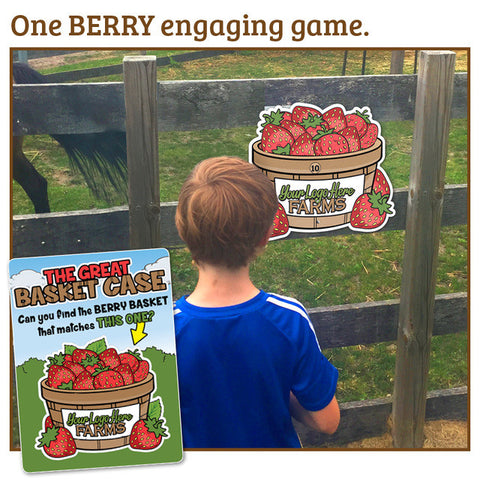 Berry Basket Case- a 'seek the match' site game