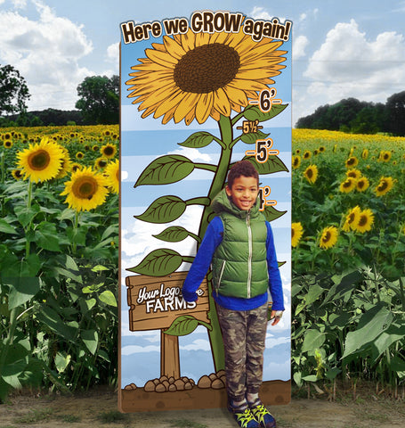 How Tall This Year? Sunflowers