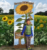Sunflowers 'How Tall This Year' Board