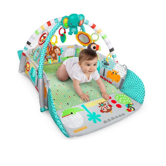 Bright Starts 5 In 1 Your Way Ball Play Activity Gym