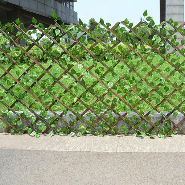 Hedge Garden Fence