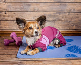 Dog Helios ® 'Namastail' Lightweight 4-Way Stretch Breathable Full Bodied Performance Yoga Dog Hoodie Tracksuit