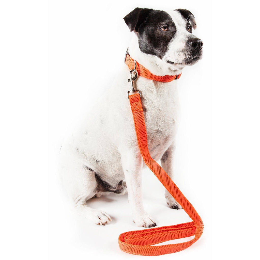 Pet Life ®  'Aero Mesh' 2-In-1 Dual Sided Comfortable And Breathable Adjustable Mesh Dog Leash-Collar Small Orange