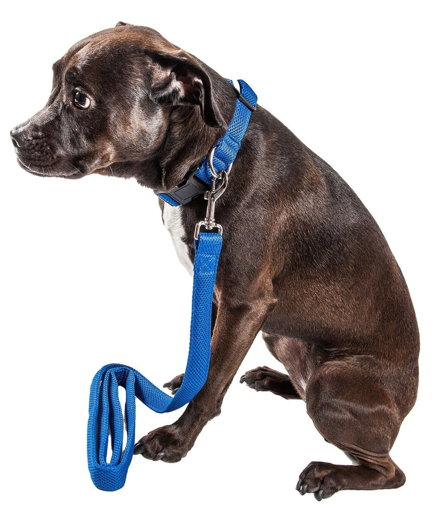 Pet Life ®  'Aero Mesh' 2-In-1 Dual Sided Comfortable And Breathable Adjustable Mesh Dog Leash-Collar Small Blue