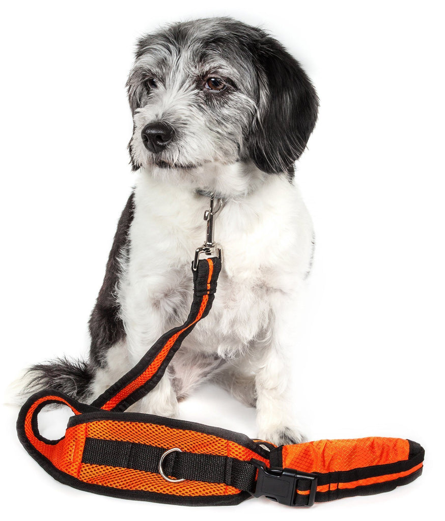 Pet Life ® 'Echelon' Hands Free and Convertible 2-In-1 Training Pet Dog Leash and Pet Belt Trainer Orange