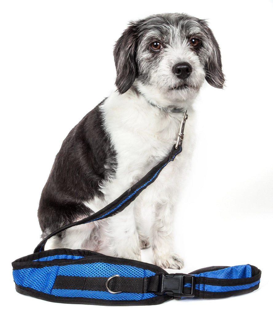 Pet Life ® 'Echelon' Hands Free and Convertible 2-In-1 Training Pet Dog Leash and Pet Belt Trainer Blue