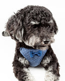 Pet Life ®  'Flam-Bowyant' Mesh Reversible And Breathable Adjustable Dog Harness W/ Designer Bowtie X-Small Navy