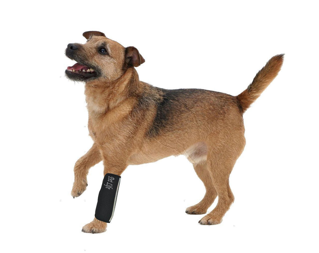 Pet Life ® 'Extreme-Neoprene' Joint Protective Safety Recovery and Reflective Pet Dog Sleeves - Set of 4