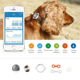 PETKIT ® 'FIT' Lightweight Water-resistant Smart Activity and Mood Monitoring Pet Dog Cat Activity Tracker Monitor
