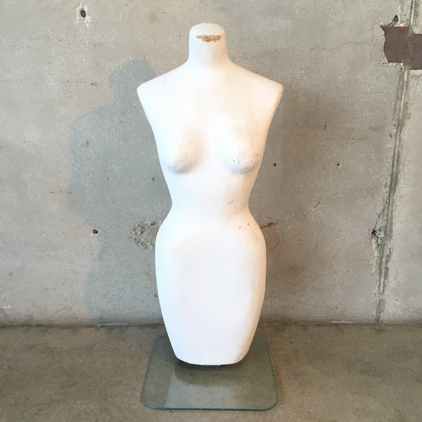 Torso Display on Glass Base