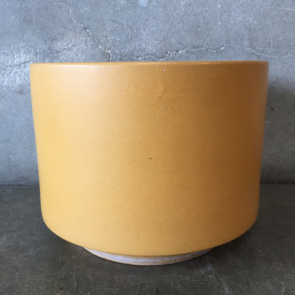 Mustard Gainey Flower Pot