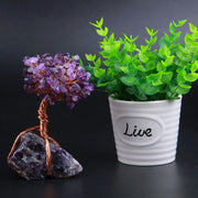 Undying Gemstone Plant (Amethyst & Fluorite) Tree of Life