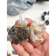 Quartz Crystal Cluster Tropical Fish Carving