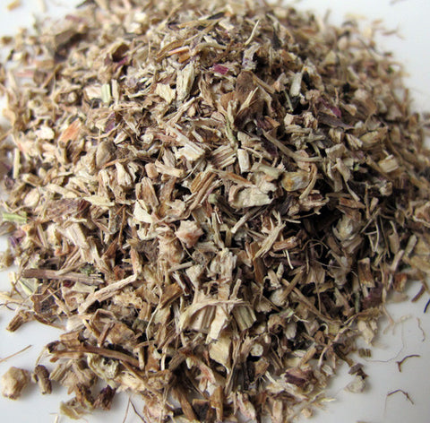 Echinacea Root - Chickadee Apothecary