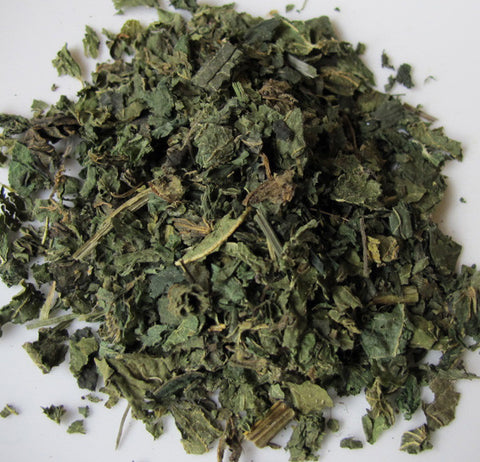Nettle Leaf, Stinging - Chickadee Apothecary