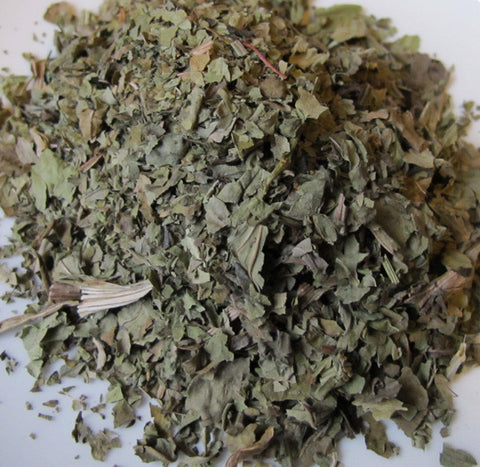 Plantain Leaf - Chickadee Apothecary