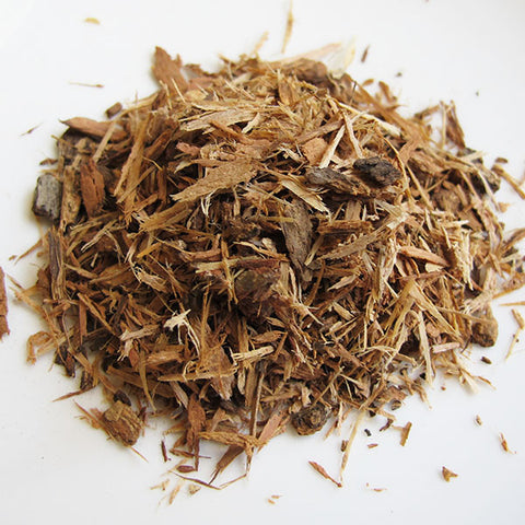 White Oak Bark - Chickadee Apothecary