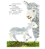 The Lamb and the Butterfly (Hardcover, Simplified Chinese)