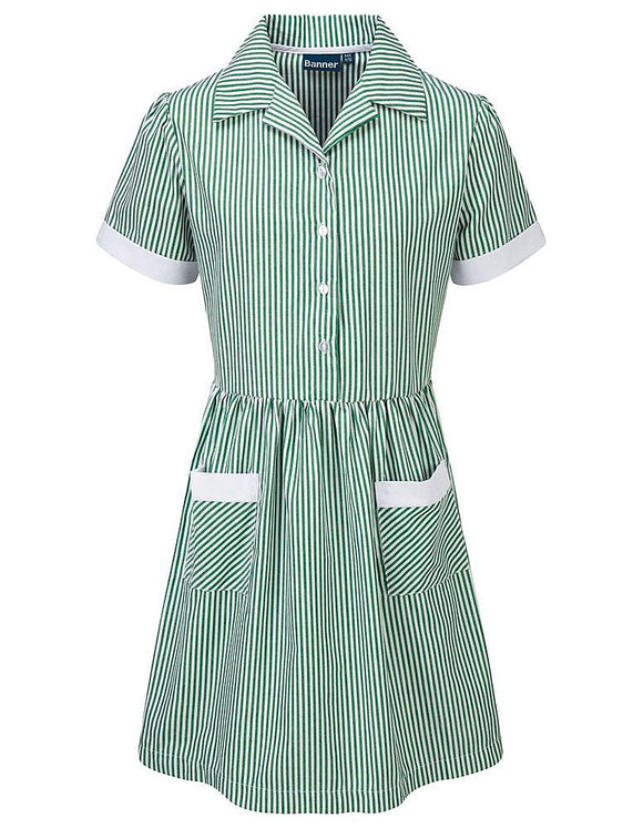 Kinsale Button Front Corded Stripe Dress