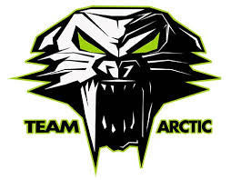 Arctic Cat Accessories
