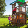 Lakewood Swing Set Ladder