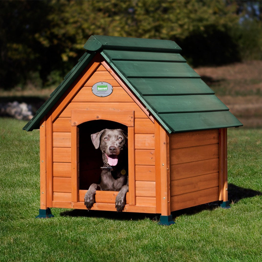 Comfy Dog House