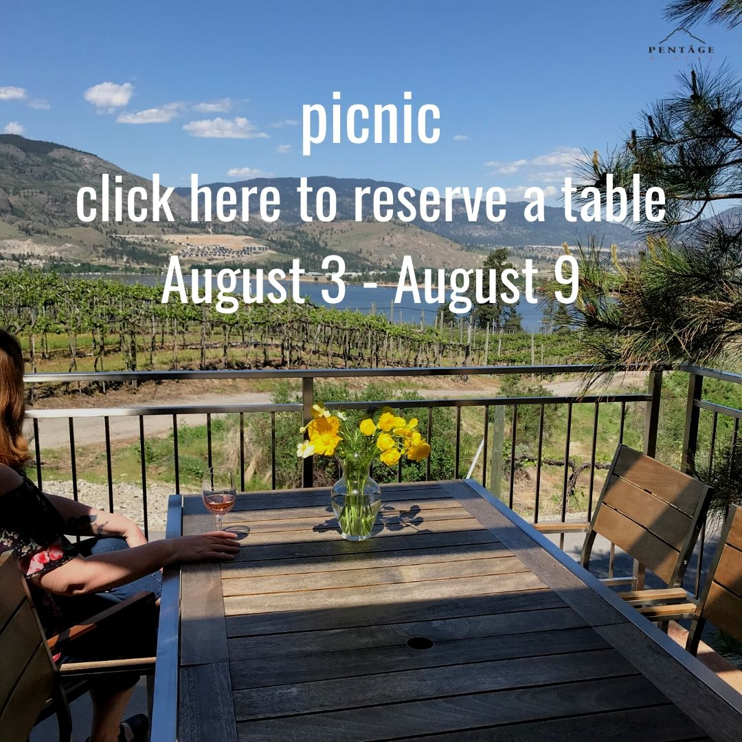 Picnic Table | August 3 - August 9, 2020