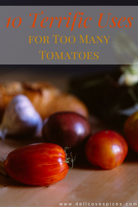 10 Terrific Ways to Use Up Too Many Tomatoes