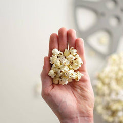 Chewy Popcorn - How to Fix It