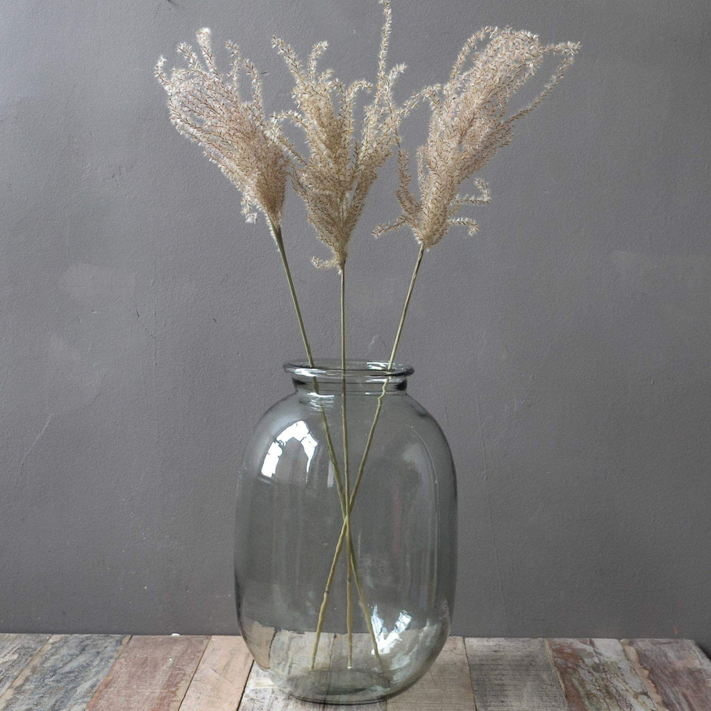 Dried Flowers - 3 Stems Fluffy Reed Grass, Natural - Liv's