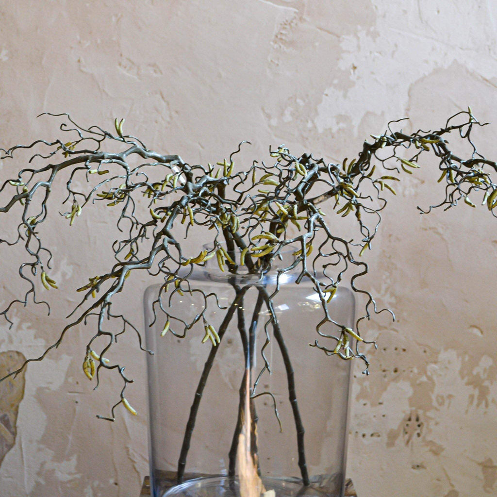 Willow Branch with Catkins - Liv's