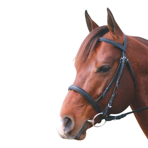 Leather Snaffle Cavesson Bridle