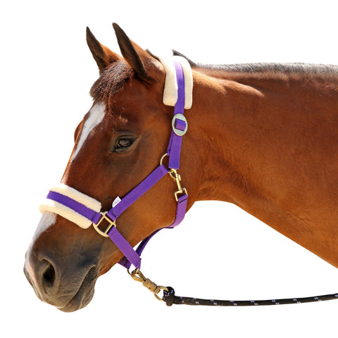 Fleece Backed Halter