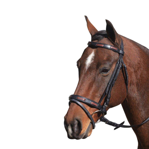 Mcalister Contrast Hanoverian Bridle