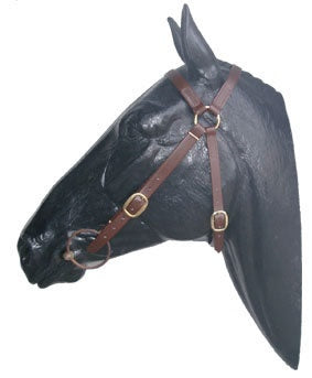PVC Bridle and Rope Slobber Reins Set