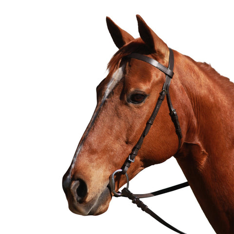 Eureka - stock bridle