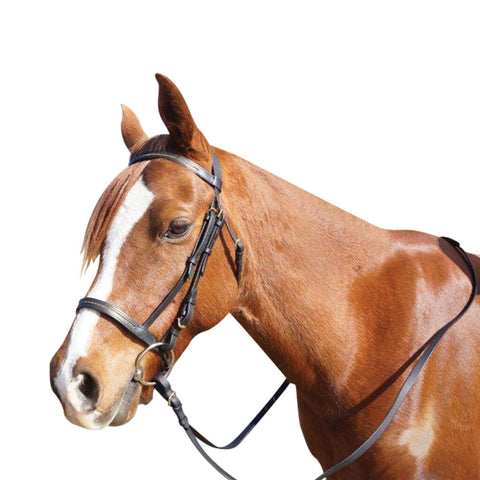Leather Cavesson Bridle with Chain Detailing